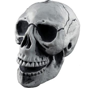 Cráneo de Plástico Gris