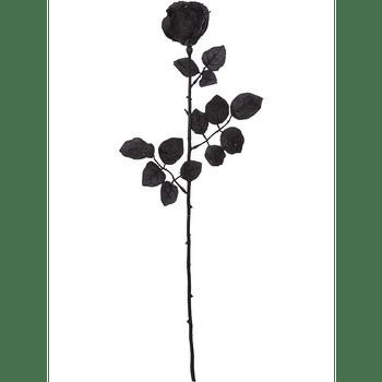 Rosas de Tela Negras